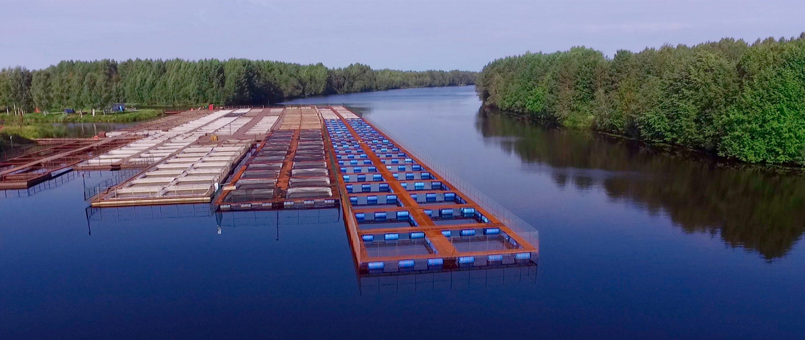 Садки на реке. Предприятия аквакультуры. Выращивание и содержание рыбы.