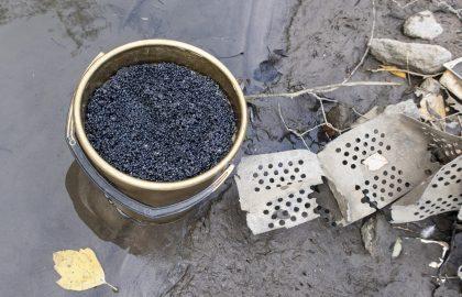 """Черная икра из """"экологически чистого района"""": о чем молчат производители"""