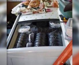 Житель Хабаровска припас 120 кг черной икры для личного потребления