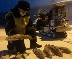 На Таймыре полицейские нашли в санях мешок с осетрами