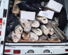Тонну браконьерской осетрины нашли инспекторы рыбоохраны на фабрике в Москве
