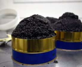 В начале 2021 года в Россию ввезено более 1,8 тонны китайской черной икры