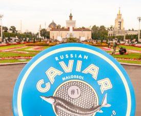 Икорная дипломатия СССР: как продвигали бренд
