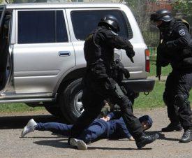 В Комсомольске-на-Амуре полицейские сорвали предновогоднюю продажу икры и осетрины