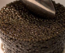 Крупнейший мировой производитель икры Kaluga Queen использует опасную борную кислоту