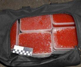 В Хабаровском крае четверым рыбакам грозит тюрьма за добычу 20 кг красной икры